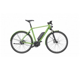 Riese & Müller Roadster Urban Hn8 56, Green Metallic