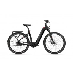 Flyer Gotour6 7.03 482 Wh Dn8 L/53, Black